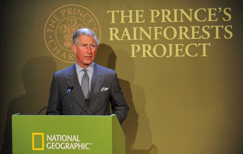 The Prince's Rainforest Project